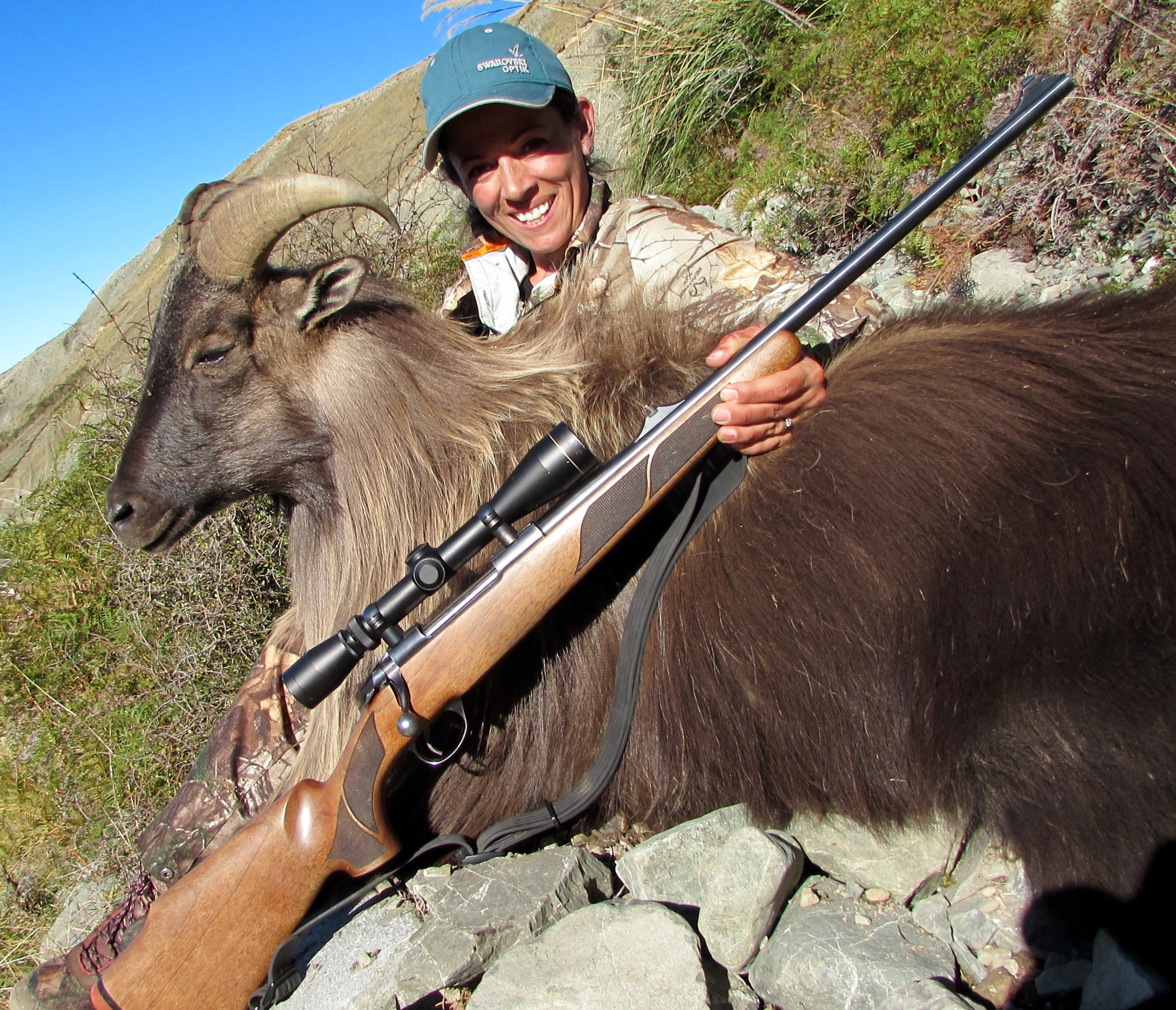 Sako-bull-tahr-New-Zealand-Lea-Leggitt-photo
