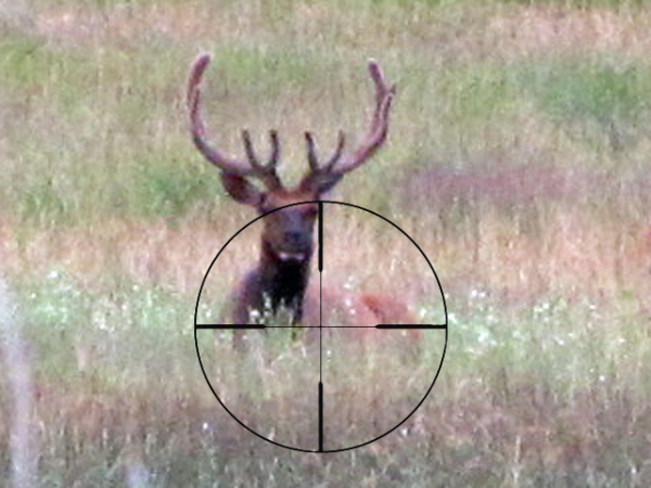 Whether you are shooting a paper target or hunting a live animal, you want to remain steady.
