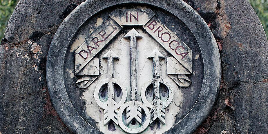 Dare-in-Brocca-thumb