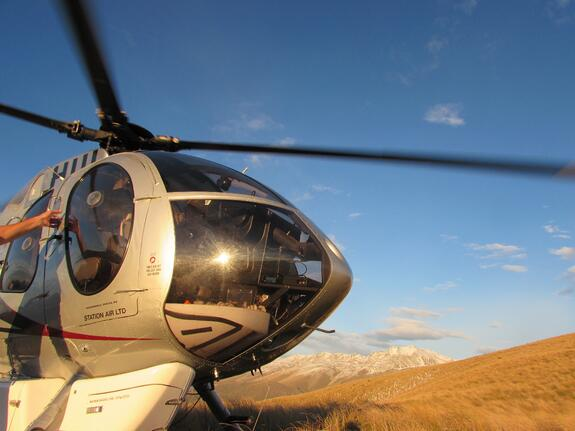 helecopter-dropping-hunters-off-New-Zealand-Mia-Anstine-photo