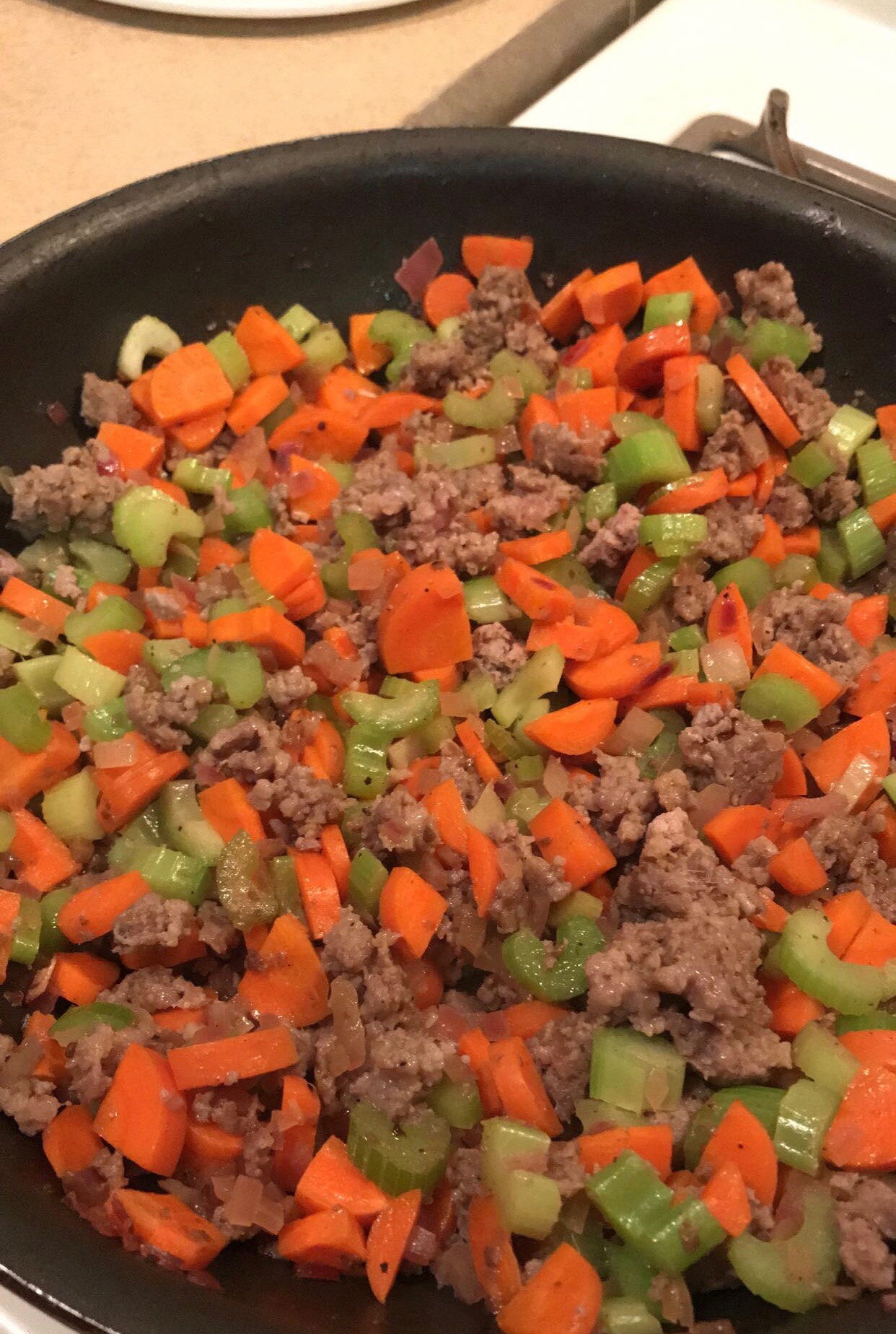 The-makings-of-the-best-mountain-lion-stuffing-Mia-Anstine-photo.jpeg