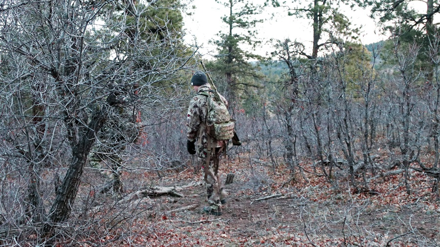 Turkey-hunter-stalk-Mia-Anstine-photo